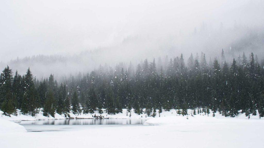 dagslysterapi i vinterlandskap